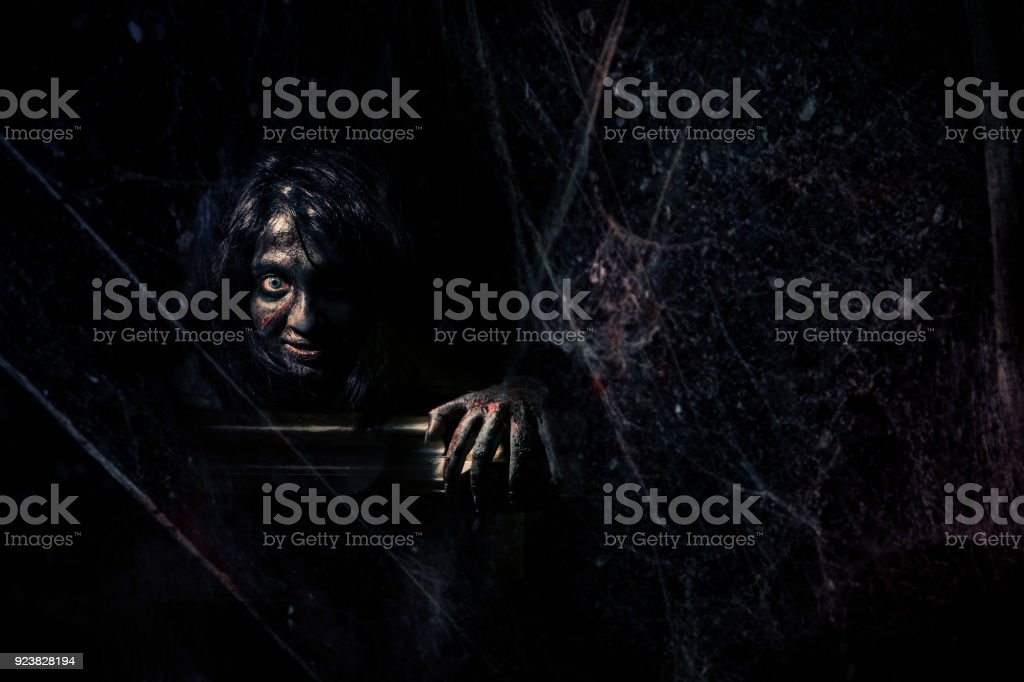 Evil behind the spider web in dark stock photo