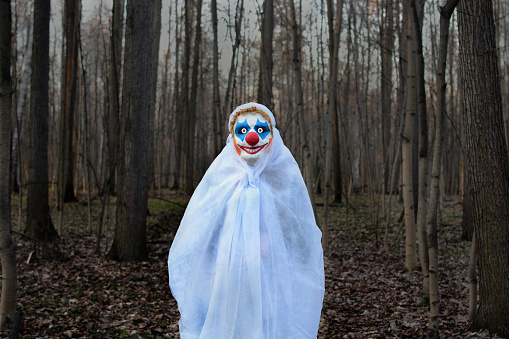 Evil Clown In A Dark Forest In A White Veil Stock Photo - Download Image Now