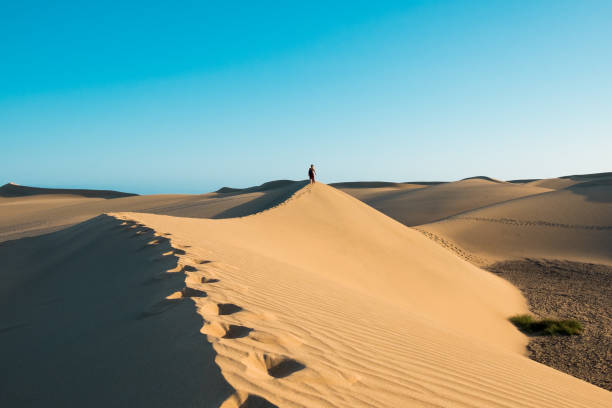 evocative young confident woman walking on her own footprints path on the desert on top of dune with red dresson hot summer day with clear blue sky stock photo