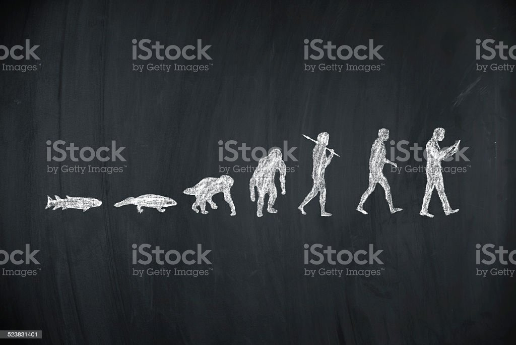 evolution of human stock photo