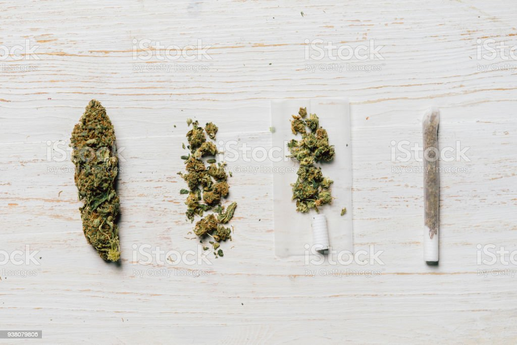 Evolution of weed stock photo