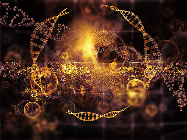 evolving dna - elementary particle stock photos and pictures