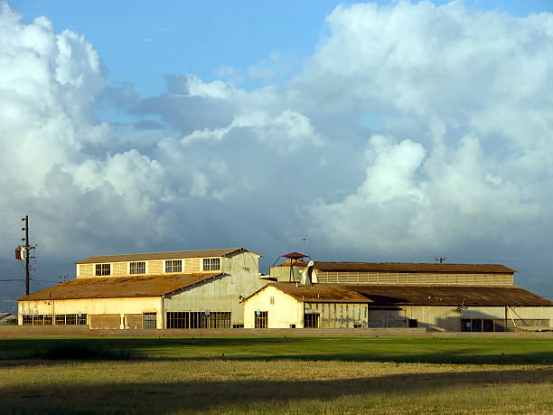 Plantation de l'Ewa - Photo