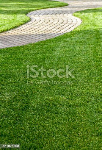 istock Exactly trimmed grass 871874698