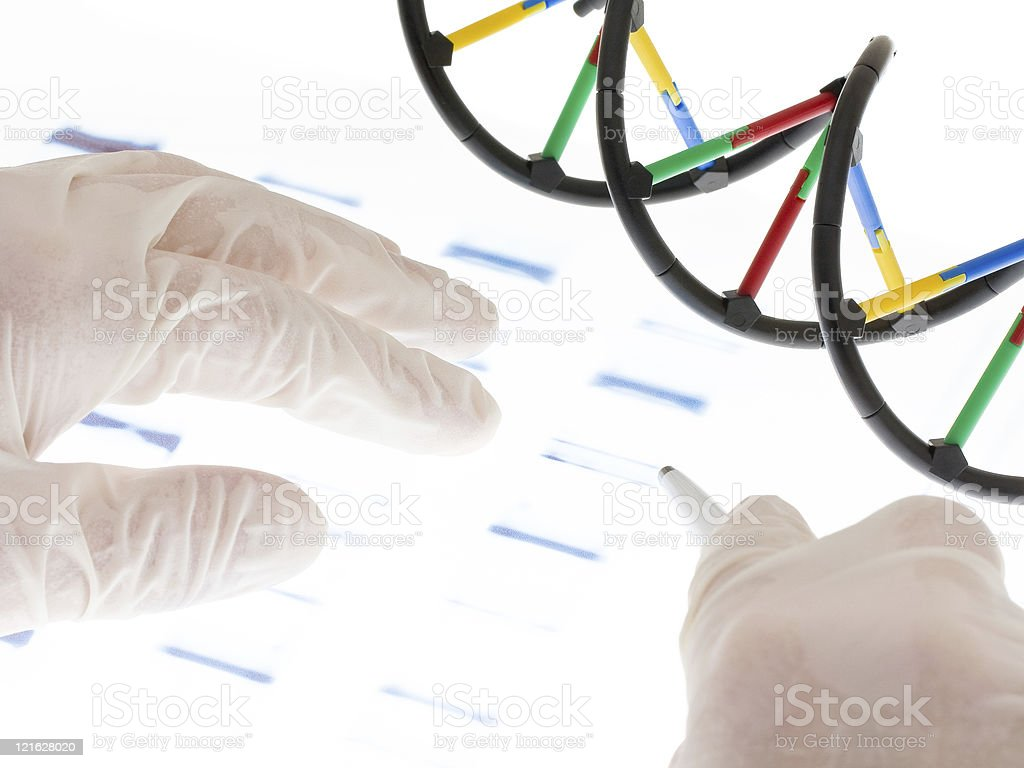 Examing DNA transparency royalty-free stock photo