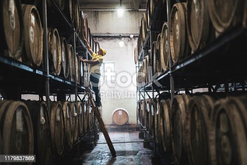 Caucasian adult man examining barrel in distillery.
