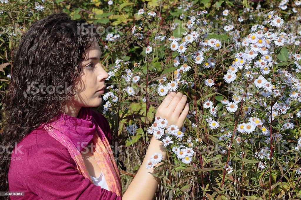 Blue Michaelmas daisies beautiful shapely Canadian outdoor girl stock photo