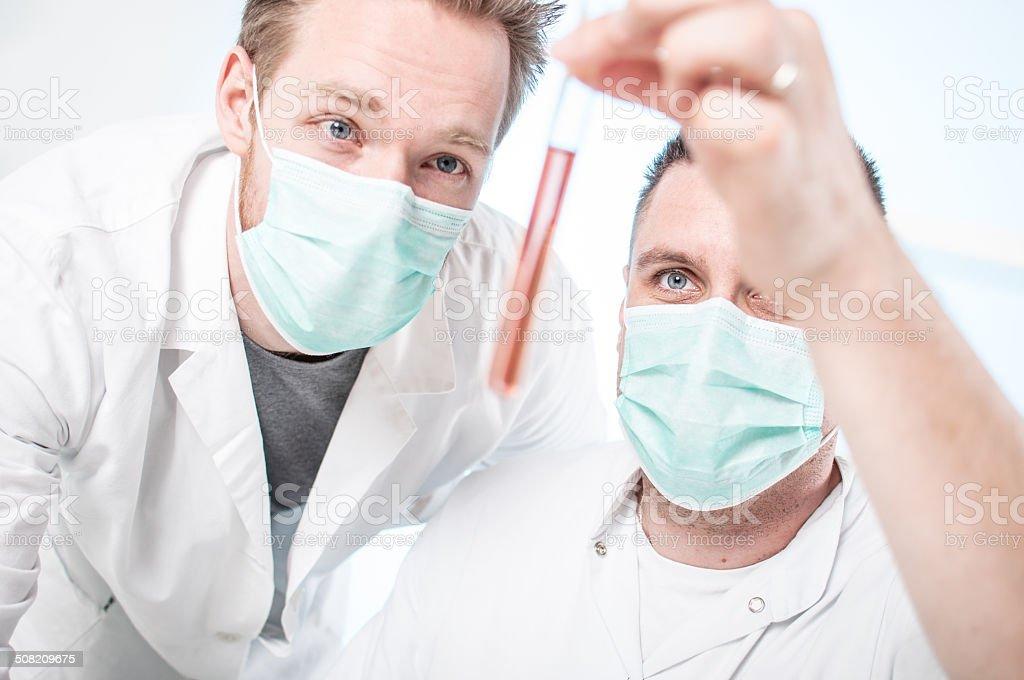 Examining test tube stock photo