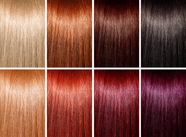 example of different hair colors - human hair stock photos and pictures