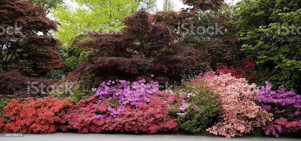 Exbury Gardens, Hampshire, UK stock photo