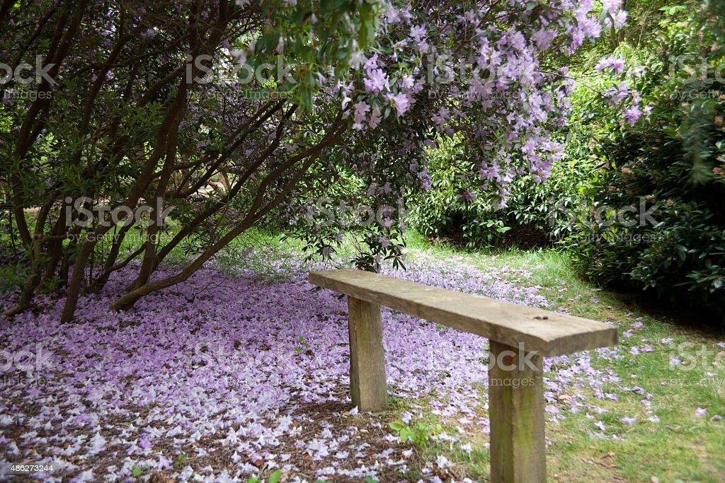 Exbury Gardens, Hampshire, UK, stock photo