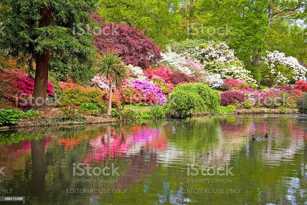 Exbury Gardens, Hampshire, UK. stock photo