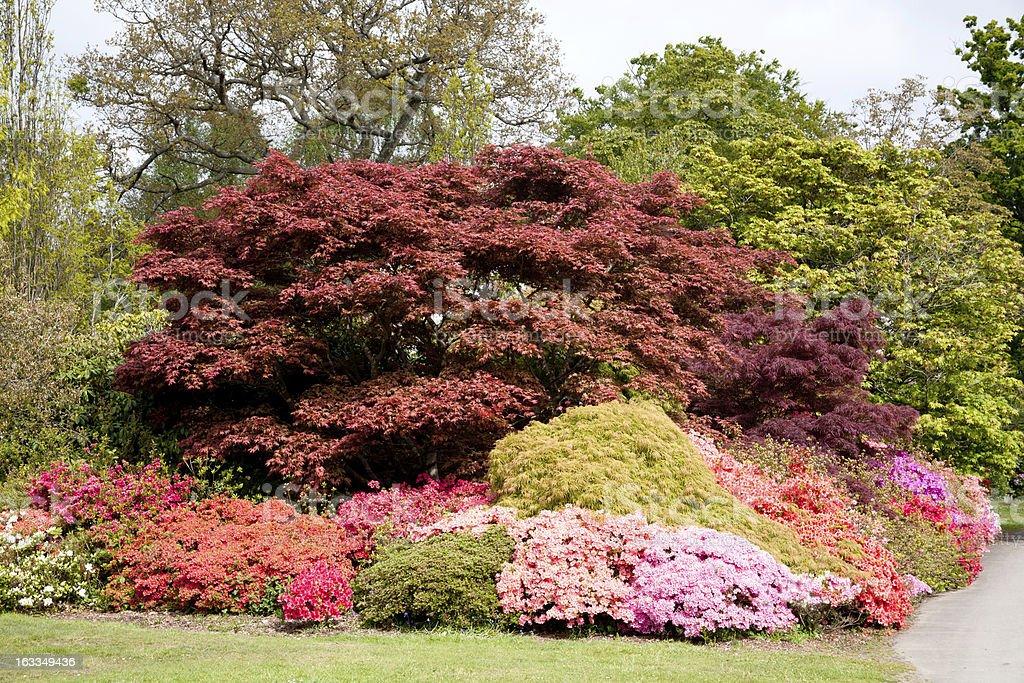 Exbury Gardens stock photo