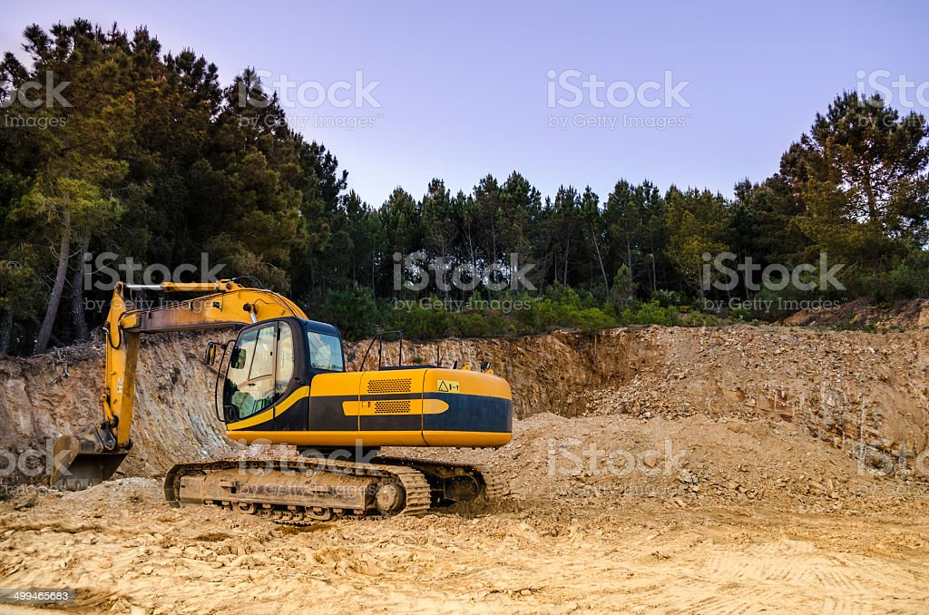 Excavator in a pine forest stock photo