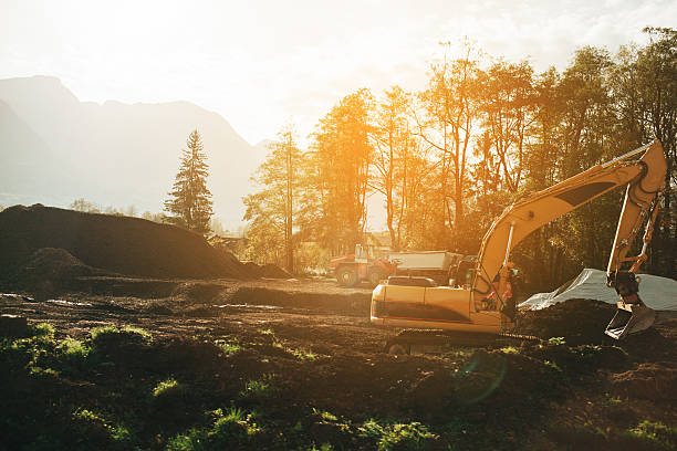 excavator in forest - logging equipment stock photos and pictures
