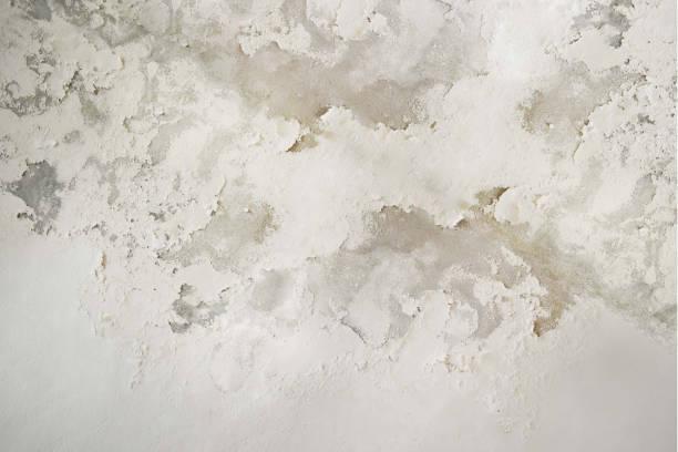 übermäßige feuchtigkeit verursachen schimmel und peeling paint wand wie regenwasser lecks oder wasserlecks. - farbe gegen schimmel stock-fotos und bilder