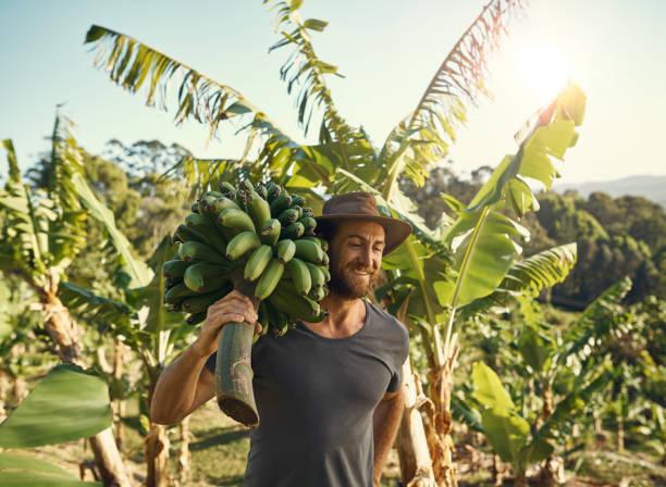 Ernährung der wachsenden Bevölkerung begeistert – Foto