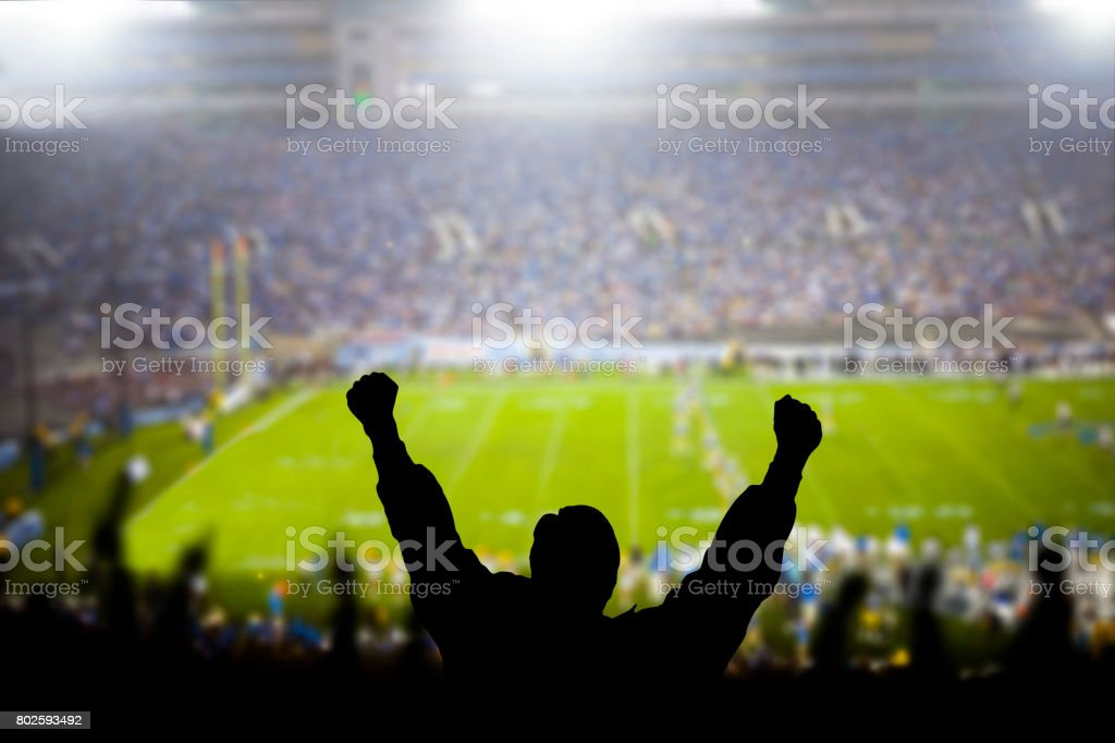 Excited Fans at Football Game stock photo