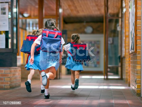 istock Excited students running towards entrance 1071269380