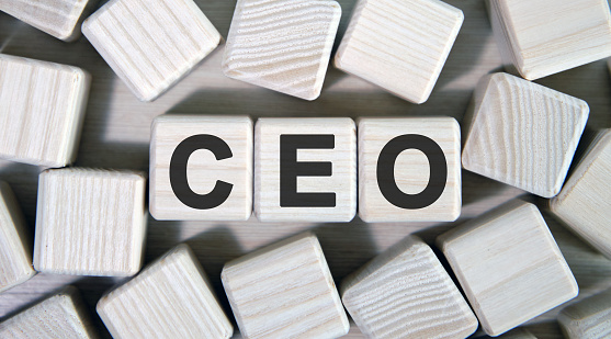 CEO - Executive General Director. Wooden cubes and many cubes around