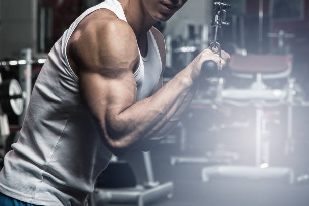 Exercise for triceps Exercise for triceps in the gym bicep stock pictures, royalty-free photos & images