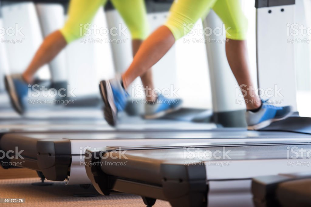 Exercising in the gym royalty-free stock photo