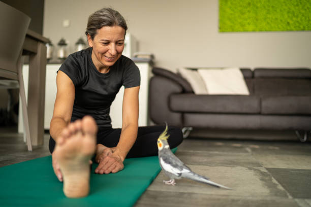 exercising woman at home smiling at her cockatiel stock photo