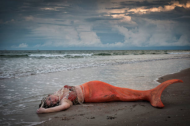 exhausted mermaid lies on shore at atlantic ocean - meerjungfrau wellen stock-fotos und bilder