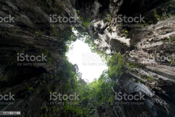 Exit From Cave Surrounded Stock Photo - Download Image Now