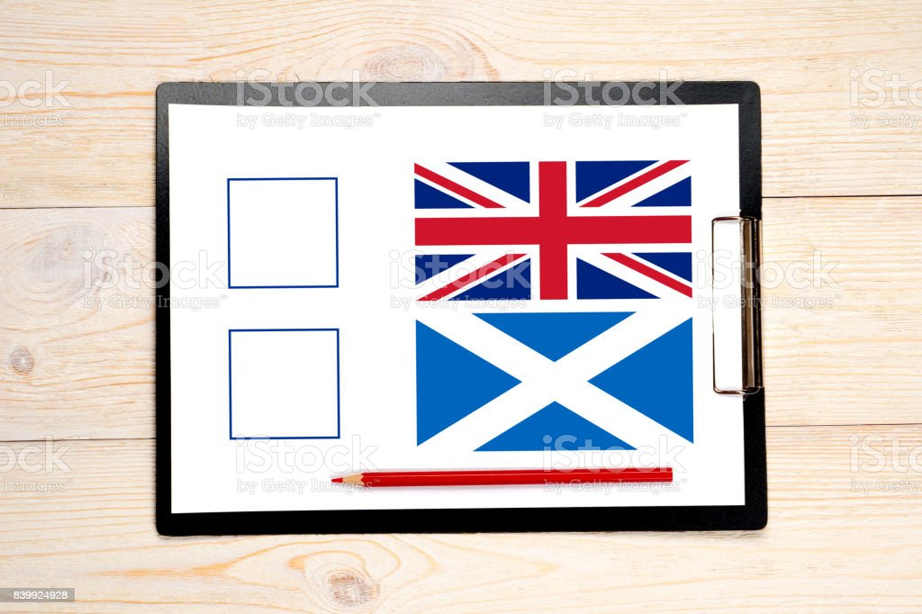 exit poll with united kingdom and scotland flags stock photo