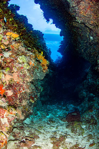 Exiy from a deep underwater canyon stock photo