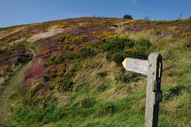 Exmoor footpath stock photo
