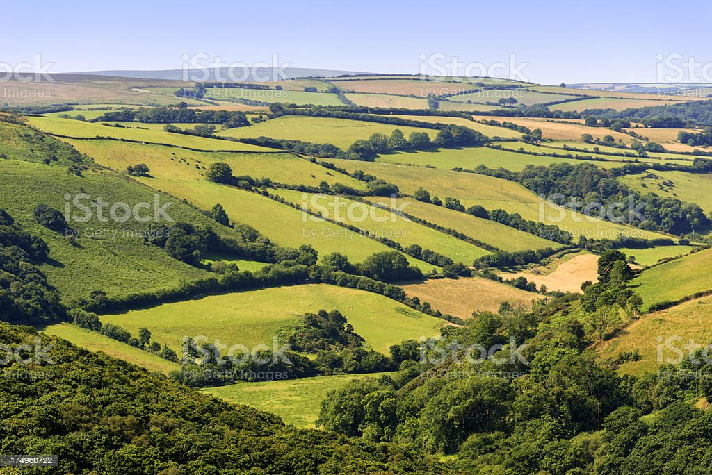 exmoor stock photo