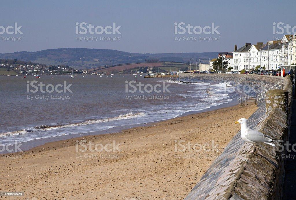 Exmouth East Devon England stock photo