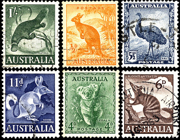 exotic animals on stamps of australia. - platypus bildbanksfoton och bilder