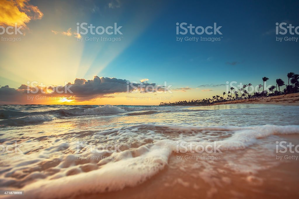 Exotic Beach in Dominican Republic, Punta Cana stock photo
