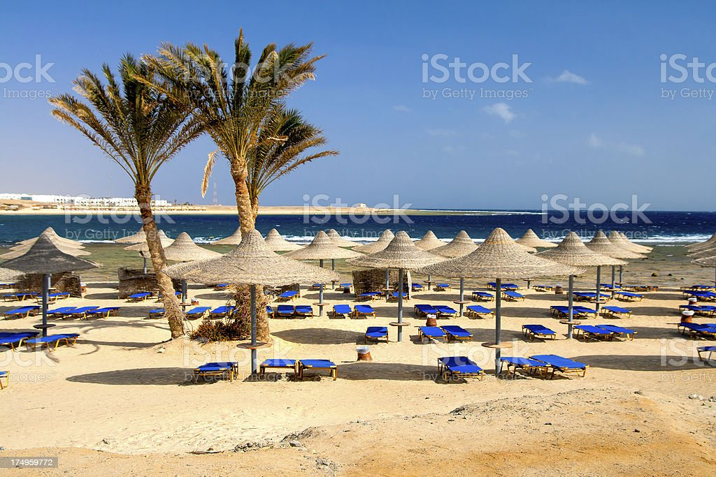 Exotic Beach stock photo