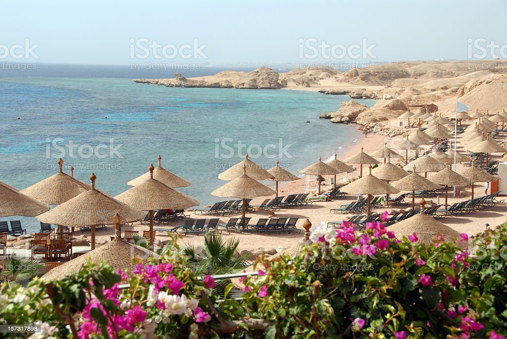 Exotic beach with parasols and bougainvillea , Sharm el-Sheikh, Egypt stock photo