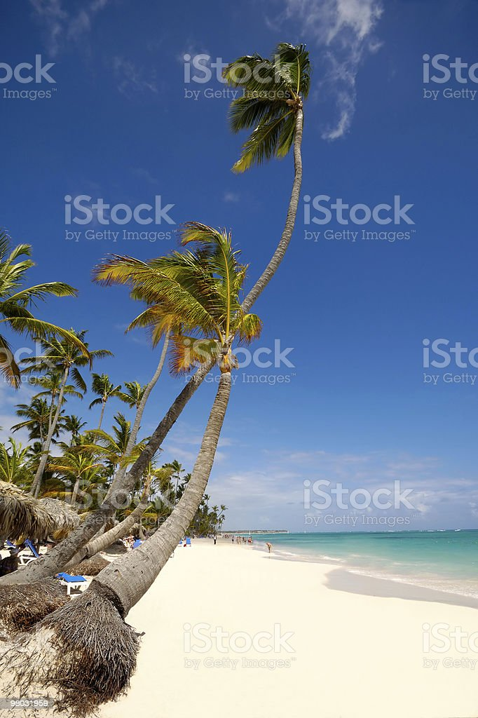 Exotic beach with white sand royalty-free stock photo