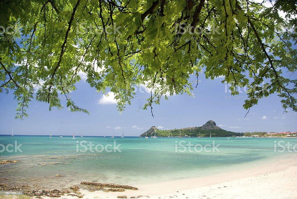exotic caribbean summer beach St Lucia stock photo