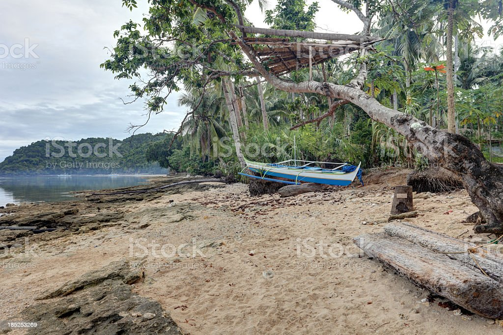 Exotic coast royalty-free stock photo