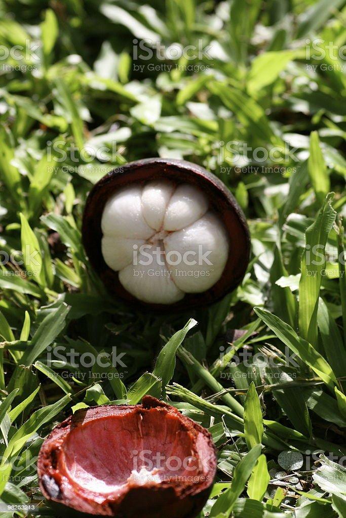 Exotic Fruit royalty-free stock photo