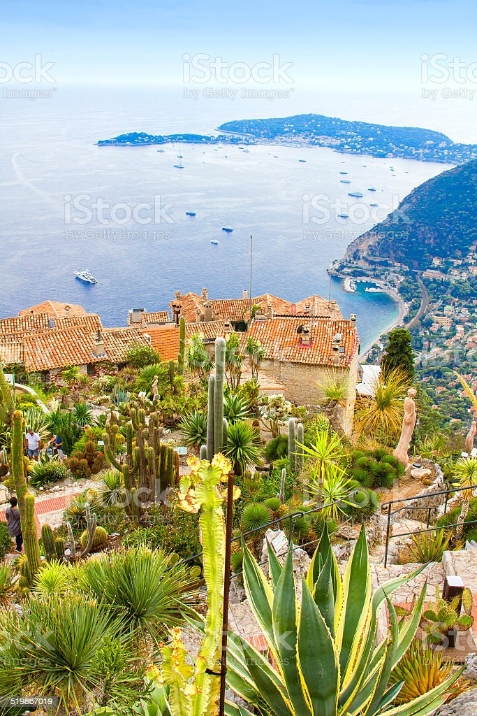Exotic garden in Eze, French Riviera stock photo