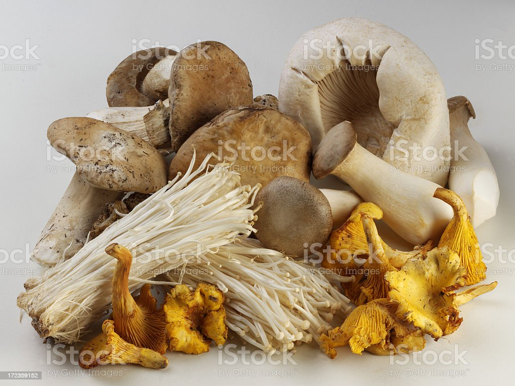 Exotic Mushrooms royalty-free stock photo