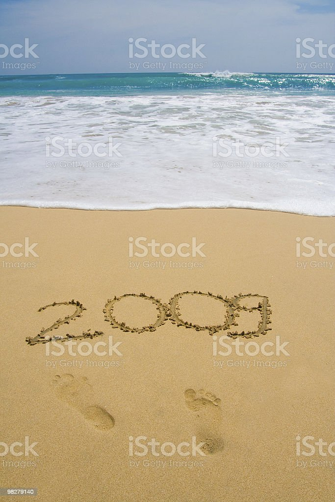 Exotic New Year royalty-free stock photo
