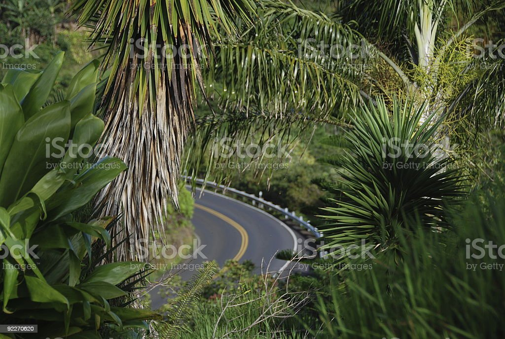 exotic roadtrip stock photo