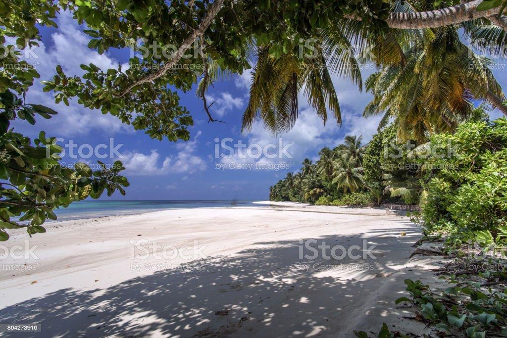 exotic Seychelles beach royalty-free stock photo