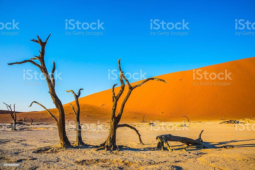 Exotic trip to Namibia stock photo