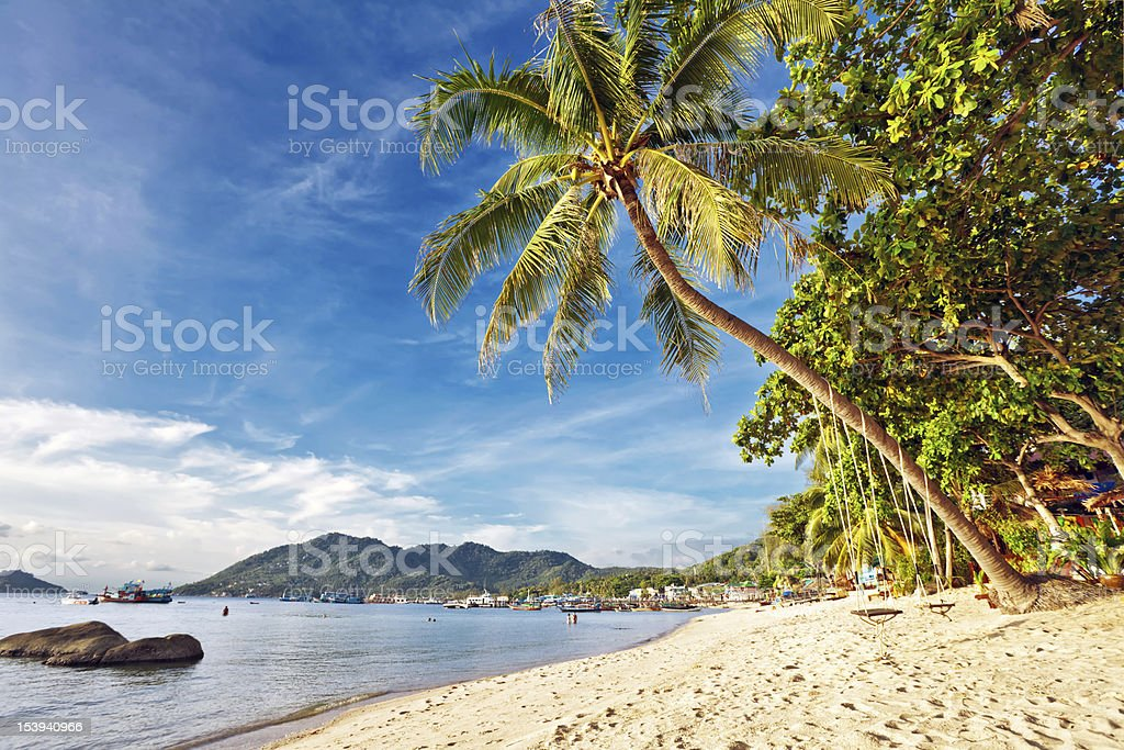 Exotic tropical beach. royalty-free stock photo