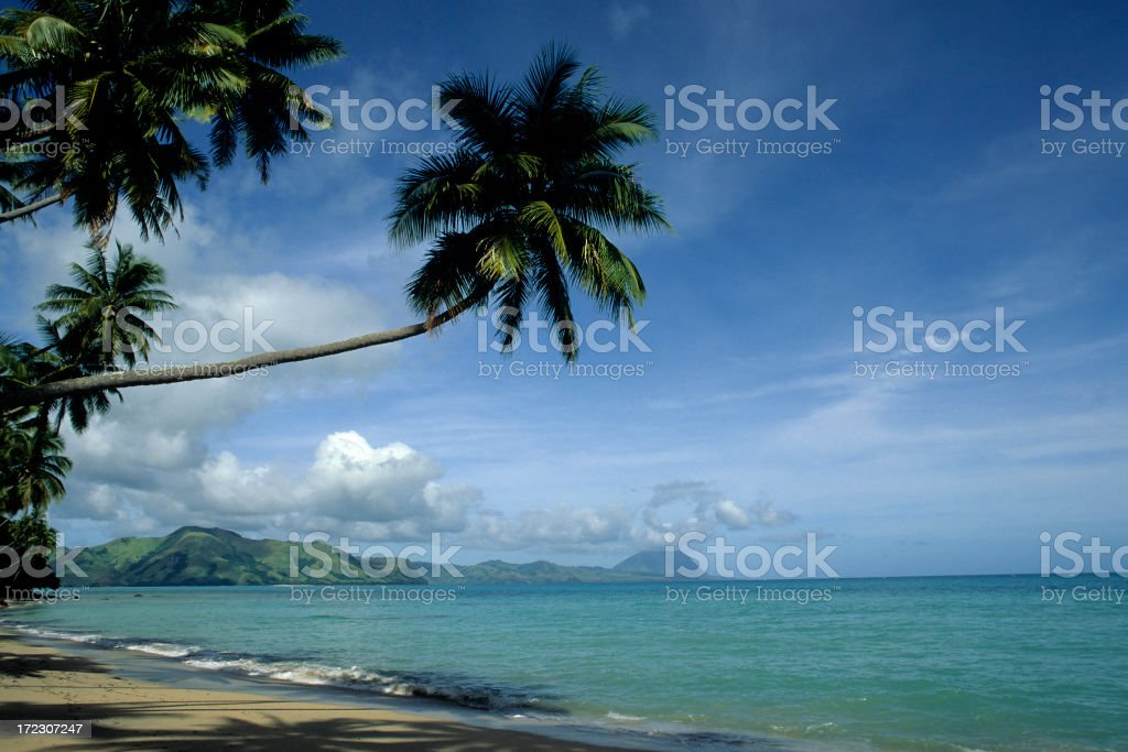 Exotic Tropical Beach royalty-free stock photo